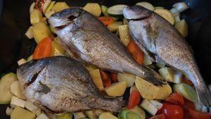 Ямальская компания решила заменить запрещенную рыбу в сетях и ресторанах Екатеринбурга