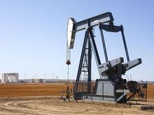 Экономист Всемирного банка спрогнозировал рост нефтяных цен до 50-60 долларов