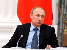 СМИ назвали бывшего совладельца крупного нефтетрейдера другом детства Путина