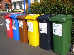 Рассортировать отходы: как россиян хотят приучить к раздельному сбору мусора