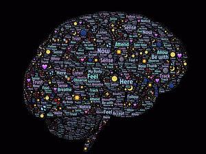 Хотите стать умнее? Научитесь признавать свою ограниченность