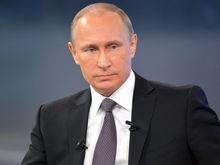 Как россияне «купились» на выдуманного политика, якобы поддержанного Путиным