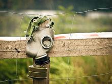 «В воздухе – токсичный газ и ядовитые пары!» Сотни челябинцев жалуются на запах фекалий