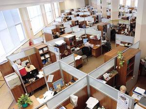 Найти и избавиться: как выявить вредных для бизнеса сотрудников