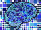 Мозг с годами меняет наши воспоминания, не знали? 7 странных свойств человеческой психики