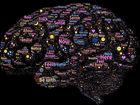 Мгновенные результаты: 10 способов улучшить память и работу мозга