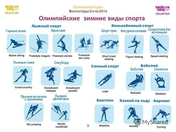 Олимпиада-2014: виды спорта