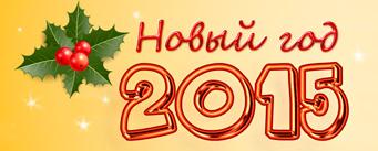 """""""Как встретить Новый год 2015"""
