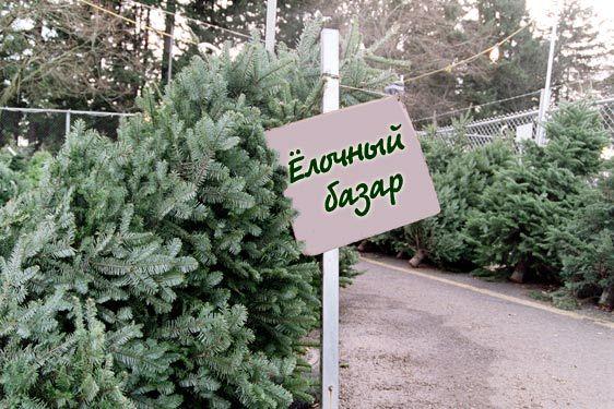 Елочный базар в Екатеринбурге -