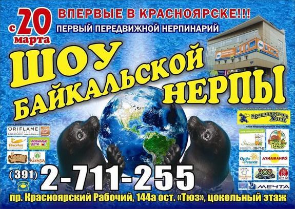 Нерпинарий в Красноярске