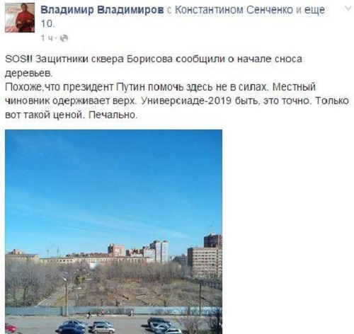 Традиционная высадка деревьев в субботник совпала с тотальной вырубкой в Красноярске  3