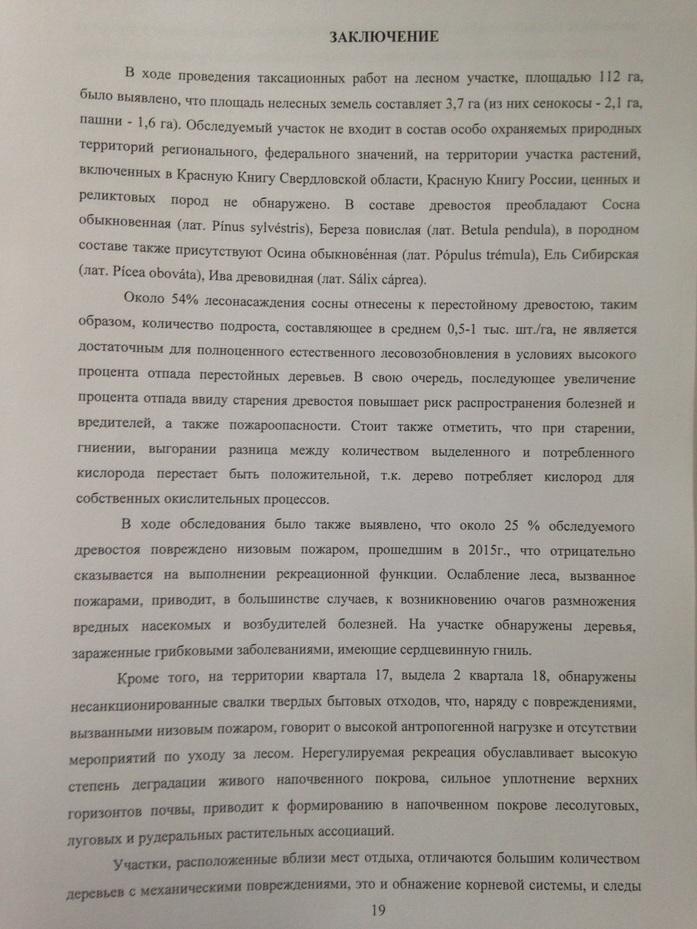 Для строительства индустриального парка «Новосвердловский» будет вырублено 500 га леса 2