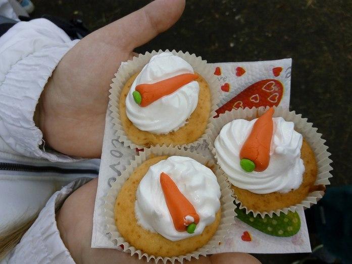 Красноярская семья проведет благотворительный праздник для всего города  4
