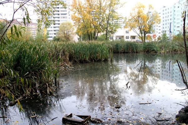 В Казани неизвестные слили нечистоты в озеро на улице Серова 1