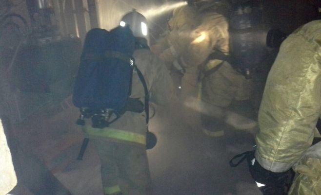 В Казани произошёл пожар на комбикормовом заводе 1
