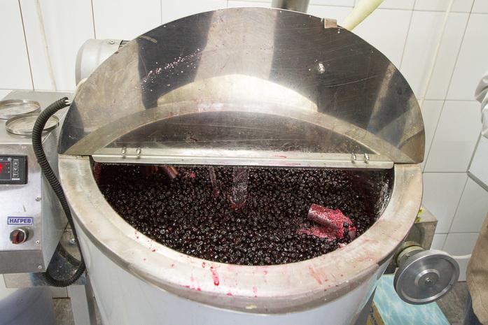 Джем из шишек, цукаты из аронии и тыквы — как открыть на Урале уникальный цех экопродукции 13