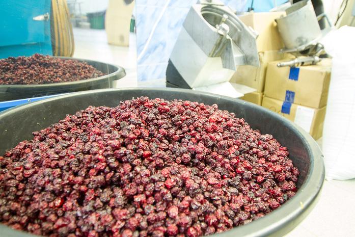 Джем из шишек, цукаты из аронии и тыквы — как открыть на Урале уникальный цех экопродукции 9