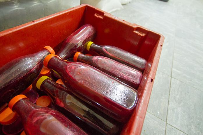 Джем из шишек, цукаты из аронии и тыквы — как открыть на Урале уникальный цех экопродукции 12