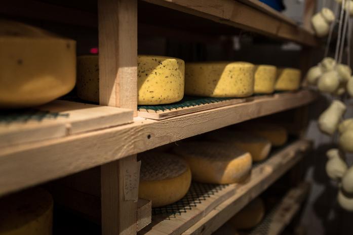 Скаморца по-нижегородски. Трое друзей производят собственный итальянский сыр 1
