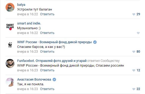 «Увидели кипиш и тоже зашли порекламироваться». Бренды устроили дикий флешмоб «ВКонтакте» 6