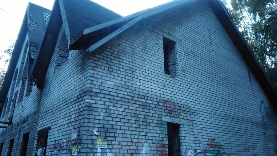 Нижегородцы выступили против строительства бассейна с кафе в Светлоярском парке 4