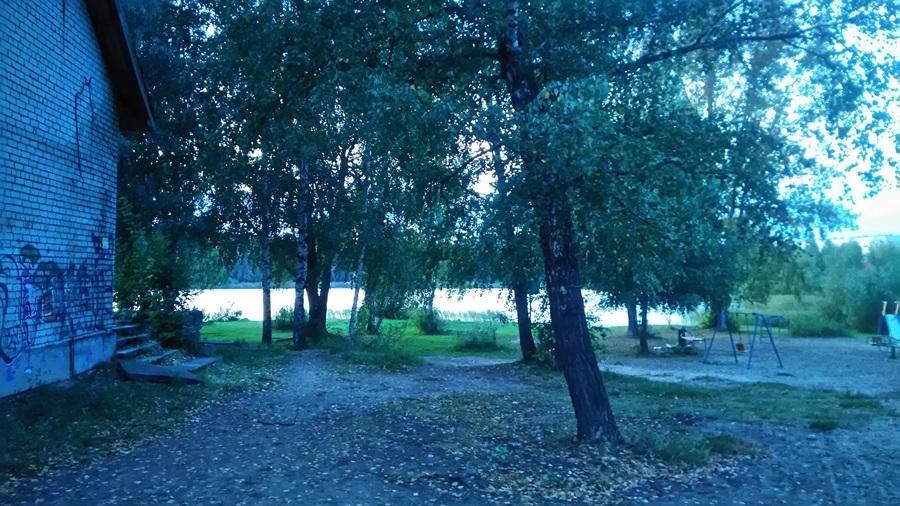 Нижегородцы выступили против строительства бассейна с кафе в Светлоярском парке 5