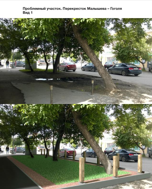 Замминистра ЖКХ оценил проект «правильного газона» от бизнесмена из Екатеринбурга  1