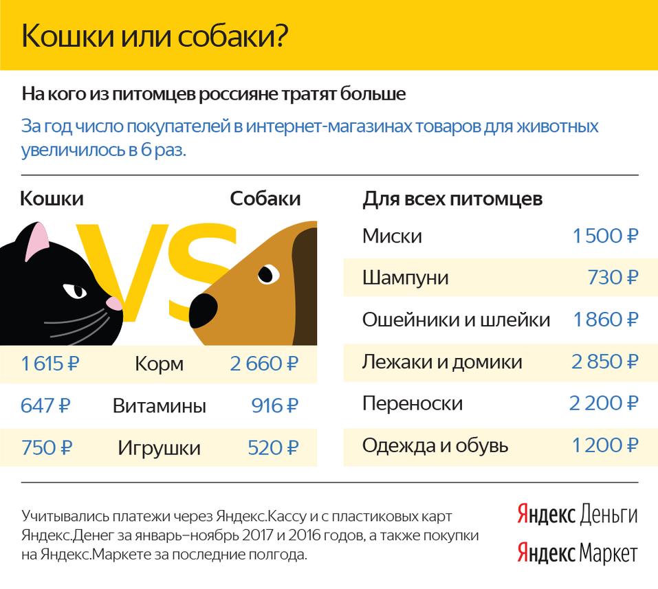 Жители ЮФО стали чаще заказывать товары для животных через Интернет 1