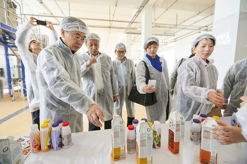 Как в Челябинске делают молоко без коровы: фоторепортаж с завода растительных напитков 9