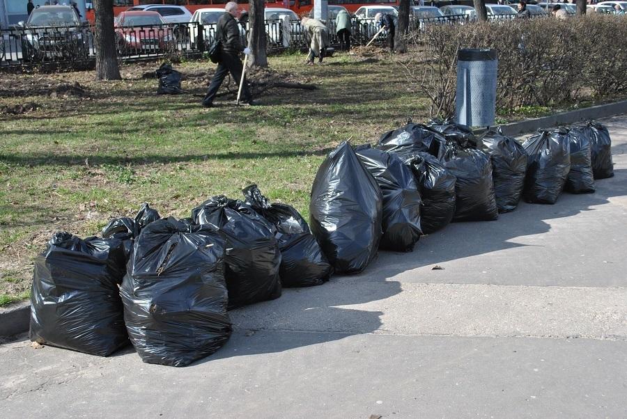 «Много «бычков» и старой листвы». Мэр Нижнего Новгорода вышел на субботник. ФОТО    2