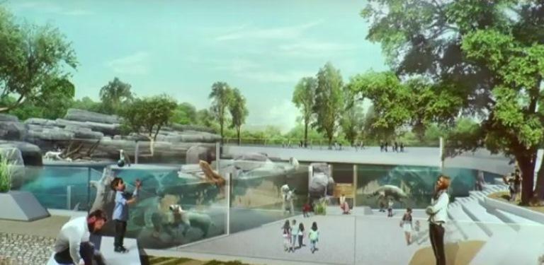 Новые подробности. Каким будет мега-зоопарк от «Синары» за 5 млрд руб.  1