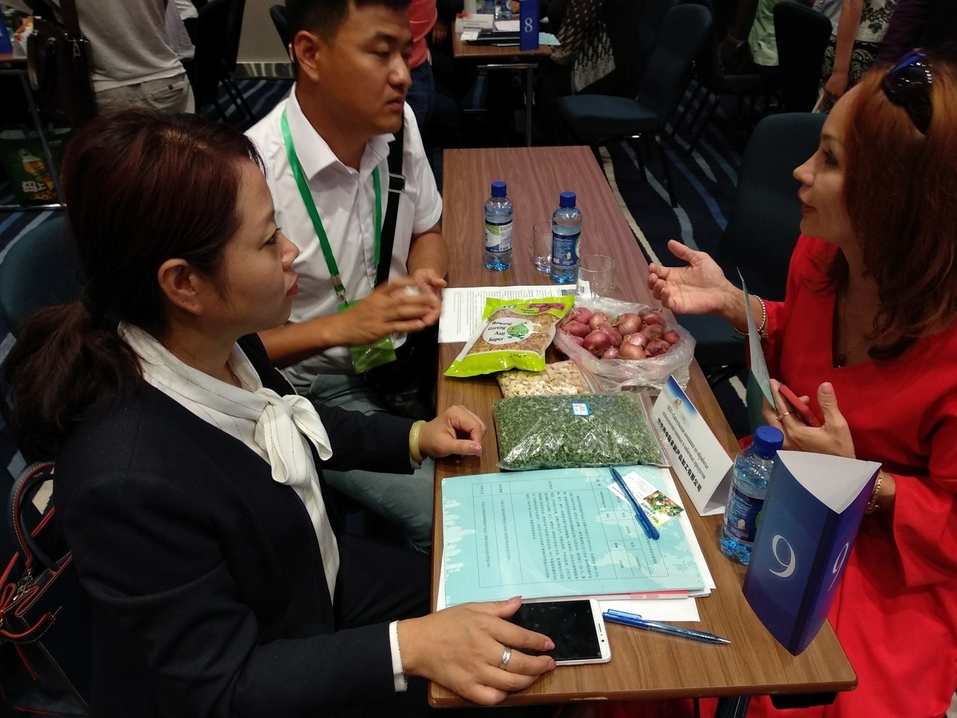 «Китайцы недоверчивые — их сложно уломать». Как прошли переговоры бизнеса Челябинска и КНР 2