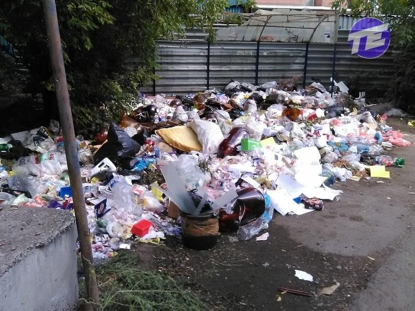 Екатеринбургу грозит мусорный коллапс. Прокуратура вынесла предупреждение мэрии 1