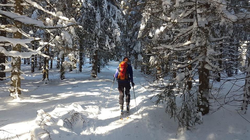 Одна из причин переехать в Gagarin Rеsidence – жить по соседству с лесом 5