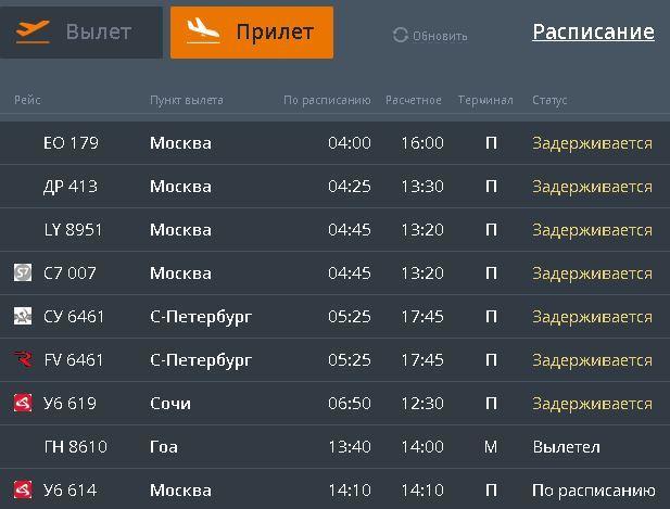 В Челябинске из-за внезапного сильного снегопада закрыт аэропорт 1