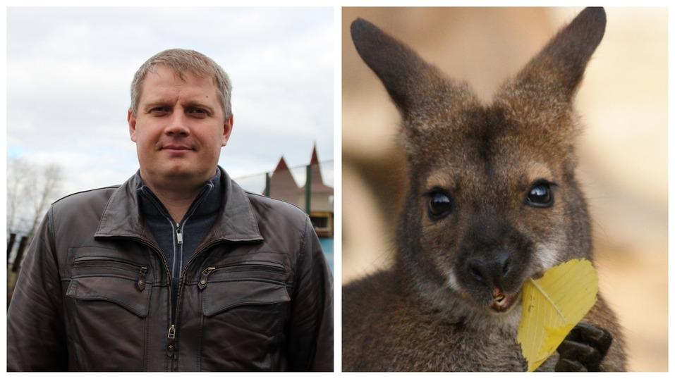 Сорокин — тигр, Тимофеев — барс. Кто и зачем опекает животных в нижегородском зоопарке? 2