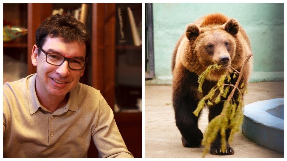 Сорокин — тигр, Тимофеев — барс. Кто и зачем опекает животных в нижегородском зоопарке? 3