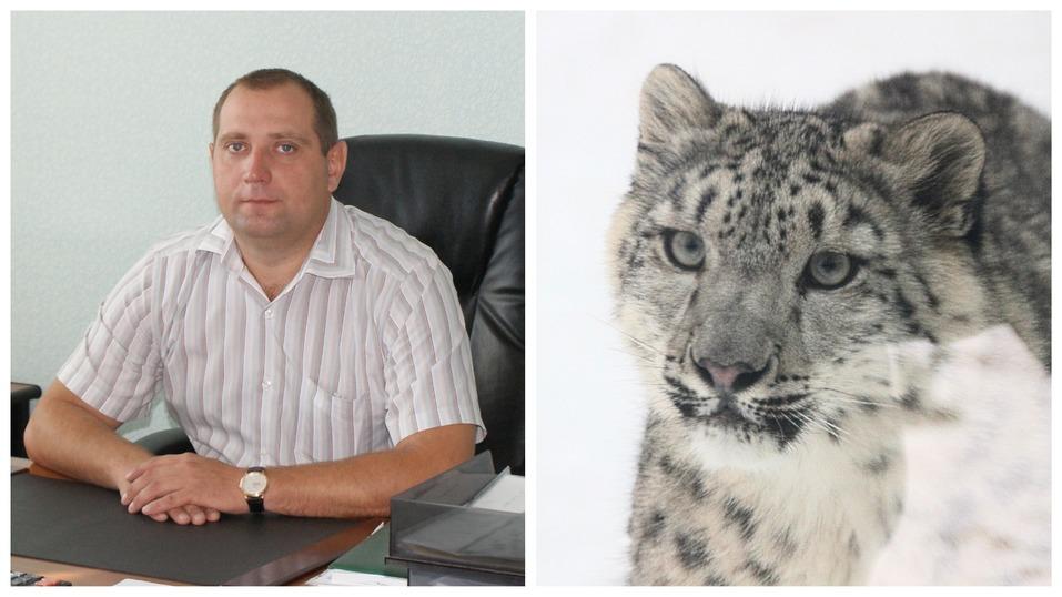 Сорокин — тигр, Тимофеев — барс. Кто и зачем опекает животных в нижегородском зоопарке? 9