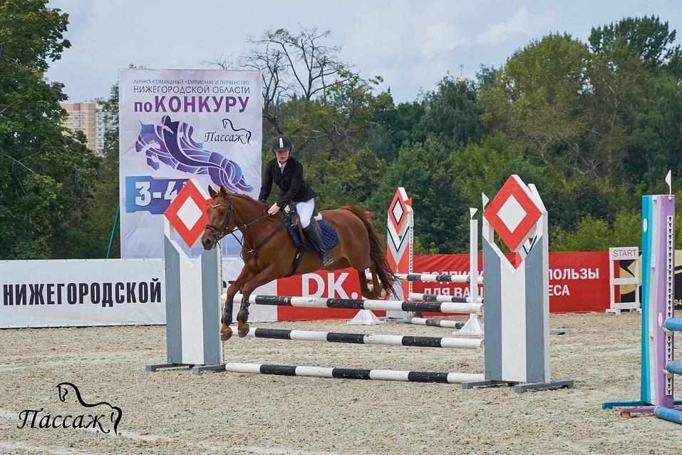 Лично-командный чемпионат и первенство Нижегородской области по конкуру 1