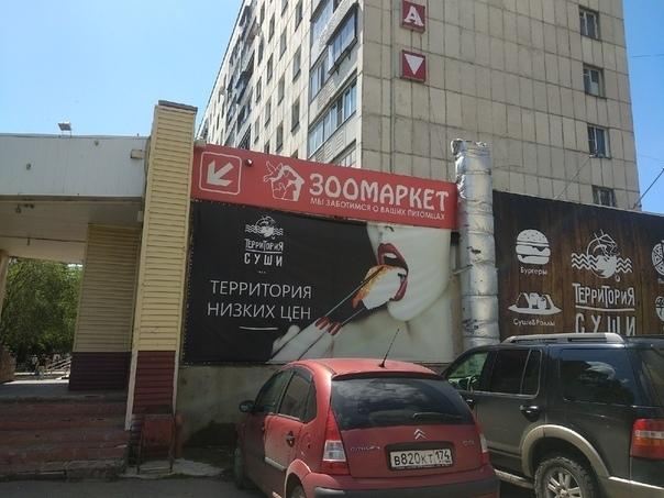 Как реклама моющего средства приводит к харассменту, — лидерка феминисток в Челябинске 2