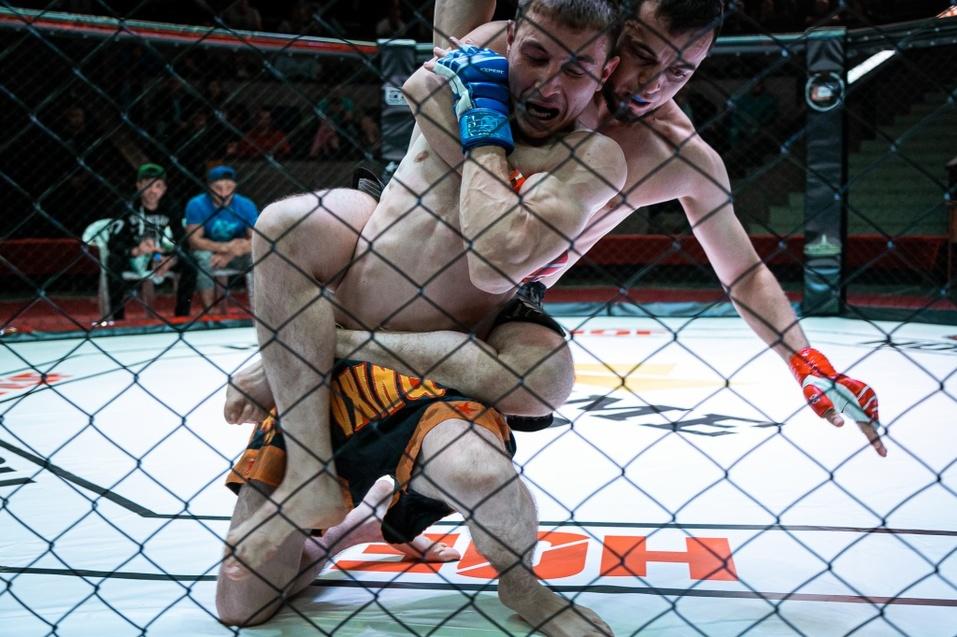 8 сентября прошел очередной турнир по ММА «Hall of Fame» в Новосибирске 2