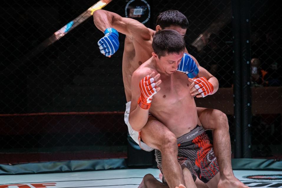 8 сентября прошел очередной турнир по ММА «Hall of Fame» в Новосибирске 9