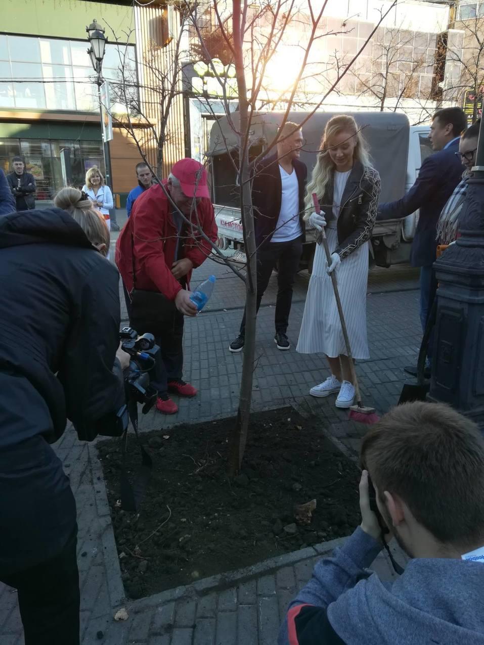Таинственное исчезновение деревьев на Кировке раскрылось 2