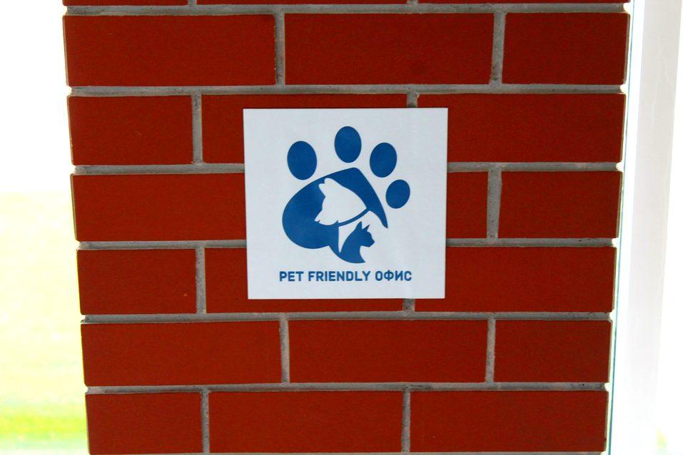 Собакам вход разрешен. Опыт создания pet-friendly офиса компании Mars в Новосибирске 1