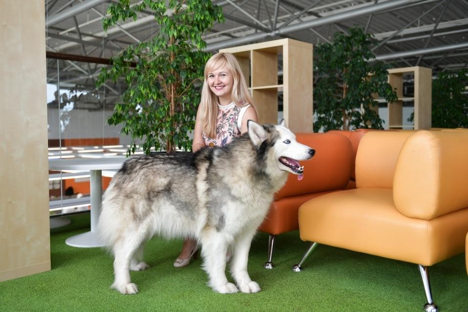 Собакам вход разрешен. Опыт создания pet-friendly офиса компании Mars в Новосибирске 3