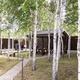 Живи в пригороде: в «Белых росах» продают новые дома с мебелью и благоустроенным участком 8