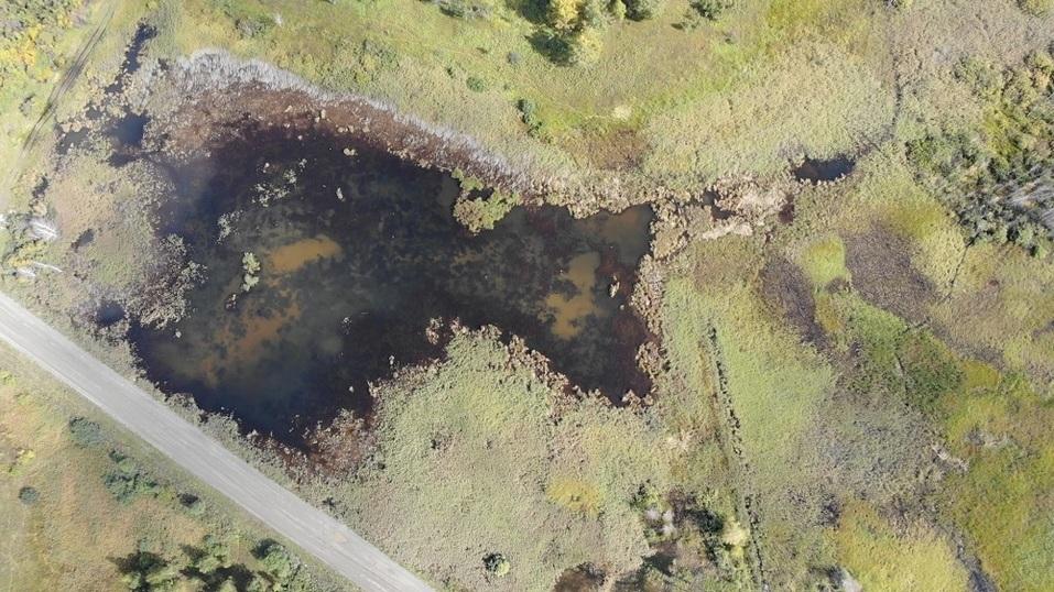 На Южном Урале куриному агрохолдингу пришлось выплатить 18 млн за выбросы помёта в полях 1
