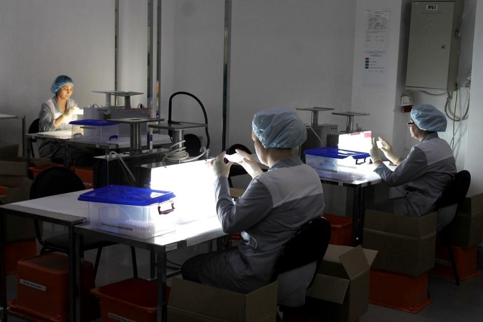 Новосибирское фармпредприятие одним из первых в России запустило маркировку лекарств  13