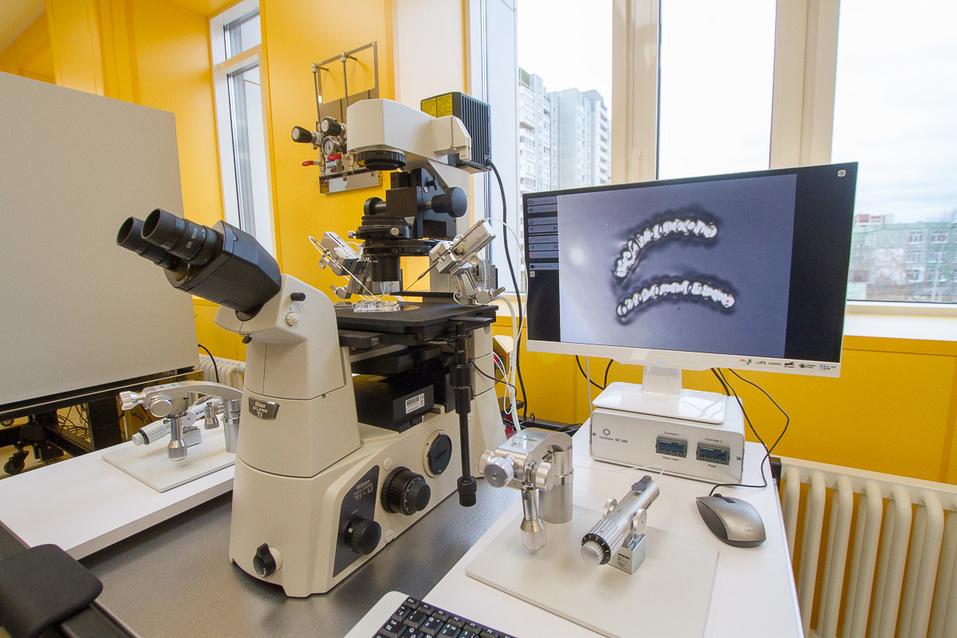 Для вспомогательных репродуктивных технологий используется самое высокоточное оборудование. Фото Игоря Черепанова, Деловой квартал
