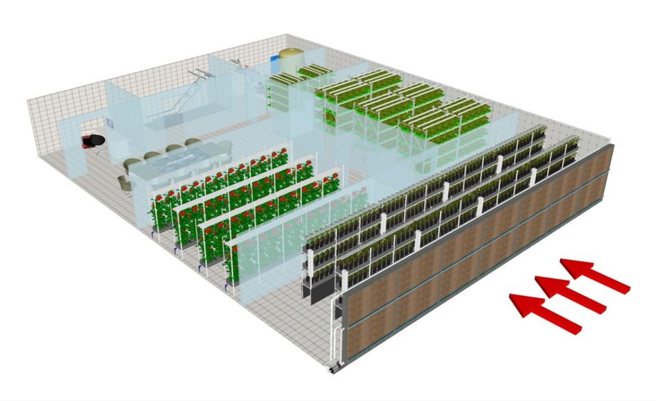 Будущее наступило: продукты будут выращивать прямо в магазине. Первый опыт в Екатеринбурге 6